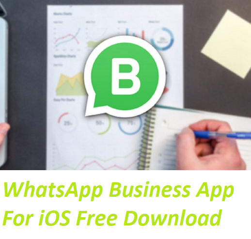 Download Whatsapp Business On Pc Archives Moms All
